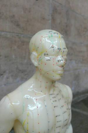 Heilpraktiker Hamburg Altona Eimsbuettel Chinesische Medizin